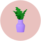 Illustration of purple pot plant